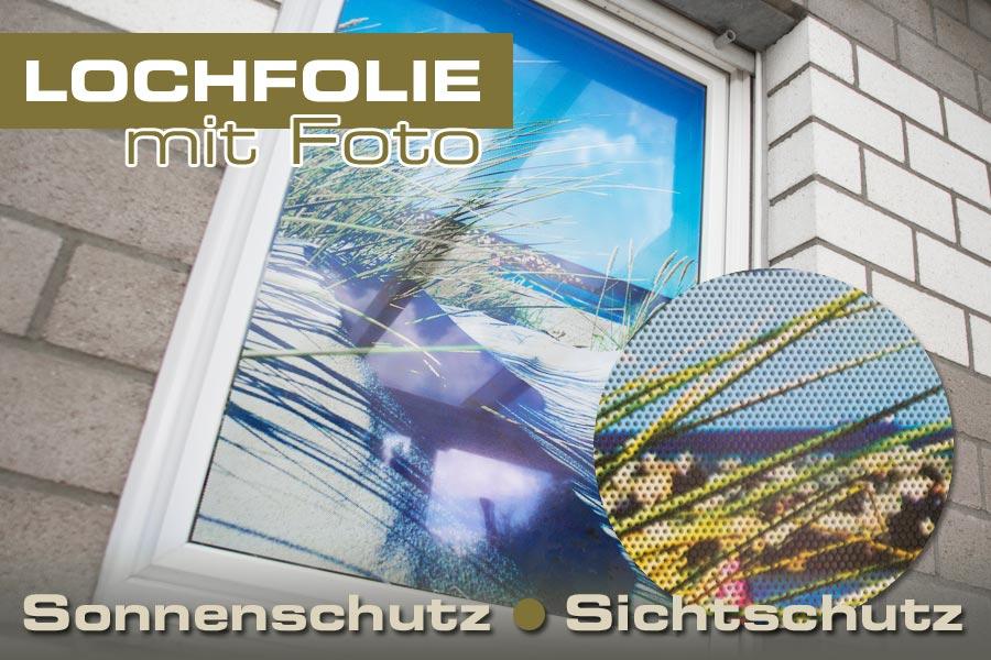 lochfolie schwarz ihr foto auf folie mit sonnenschutz ifoha. Black Bedroom Furniture Sets. Home Design Ideas
